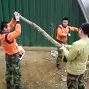 Entraînement soldat coréen