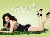 Weeds Word, pour ceux auraient encore vues