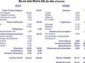 Bilan 2009 l'entreprise MAFIA