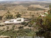 Agriculture Afrique Tunisie plein essor