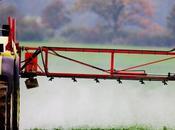 Pesticides l'INRA brise mythe