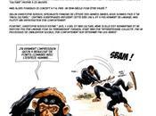 Chimpanzés ont-ils culture propre