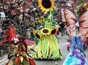 Vive carnaval