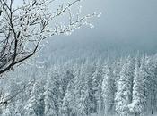 fait encorte froid dans notre beau pays....