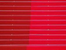 tapis rouge, nouveau défilé mode