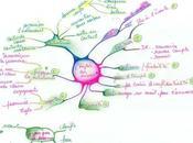 carte heuristique réseaux