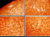 Zones actives solaires NOAA 11046 11048