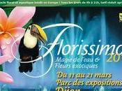 Exposition FLORISSIMO Dijon