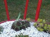 Chaise bistrot recyclée jardinière succulentes