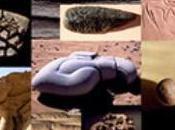 Livre: Curiosités géologiques Sahara-à mettre dans votre sac-