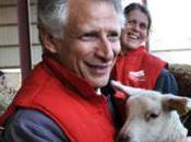 sont partout moutons dominique villepin