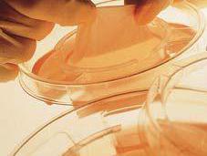 Peau artificielle l'agarose améliore qualité