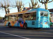 Chemins Corse Reprise traifc bus.