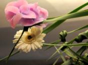 fleurs dans cheveux