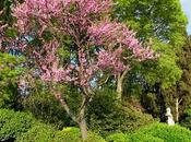 couleurs printemps Venise