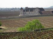 Leçon d'oenologie accelérée Bourgogne