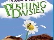 [série] Pushing daisies