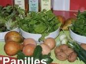 Mesclun salade poire
