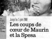 coups coeur Maurin Spesa