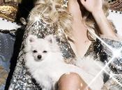 Paris Hilton offre mini villa chihuahuas