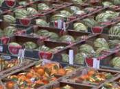 """""""Assiette tous risques"""" manger peut nuire santé, soir France"""