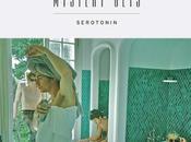 Mystery Jets 'Serotonin'