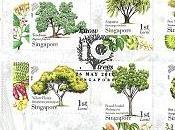 arbres connaître Singapour
