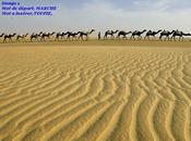 19)Grain folie(texte G.Sand) carambaolé