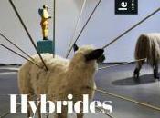 expositions d'été Parvis centre d'art (65)