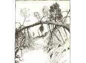 Edmond Baudoin plaisir dessin s'expose Issy