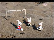 Partie foot pour lapins crétins