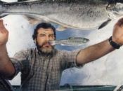 saumon transgénique bientôt dans assiettes américaines