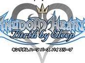 [Test] Kingdom Hearts Birth Sleep