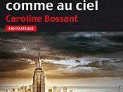 terre comme ciel Caroline Bossant