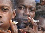 tabac fait encore plus ravages dans pays pauvres