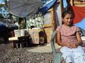 Circulaire illégale, fichier ethnique illégal… Roms dans sarkollimateur