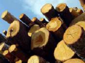 bois côte dans l'habitat français