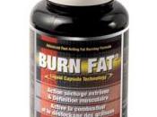 Développer corps sans graisse avec Burn