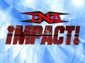 impact novembre resultats