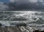 Flore l'île Groix ligne