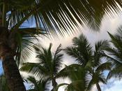 carte s'invite Guadeloupe février 2011
