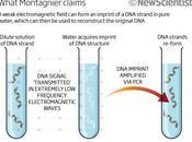 Montagnier téléportation quantique l'ADN