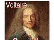 Voltaire, belle affaire