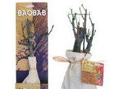 plante exotique, Baobab