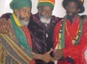 Abyssinians bientôt route pour l'Angleterre!