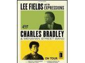 Charles Bradley, Fields Menahan Street Band