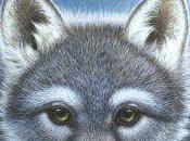 royaume loups Kathryn Lasky