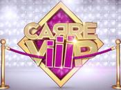 Carré Viiip Candidats liste