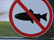 poissons d'avril 2011 principaux canulars dans medias