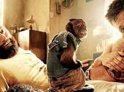Very Trip bande annonce donne envie Bradley Cooper aussi
